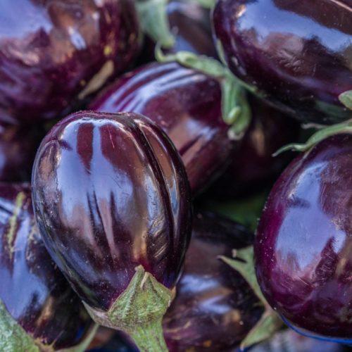 Semences et graines bio d'aubergine black beauty