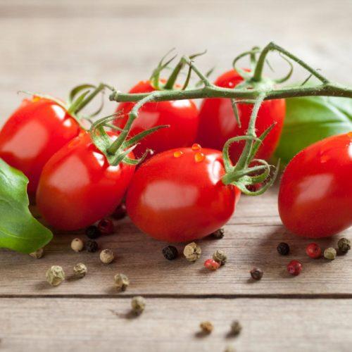 Graines et semences de tomates cerises race brin de muguet bio