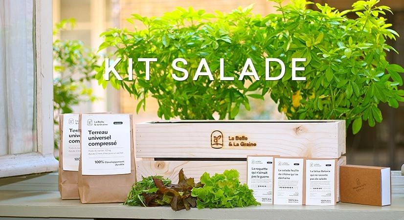 Graine et semences bio de Salade