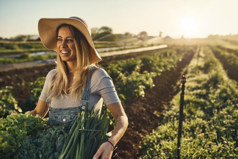 Semences et légumes bio